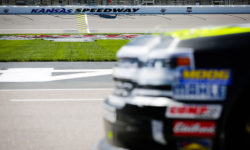 Race Preview —37 Kind Days 250